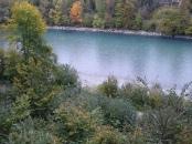 Ufer sind grün, aber nicht schön | by @WORTlieb.ch